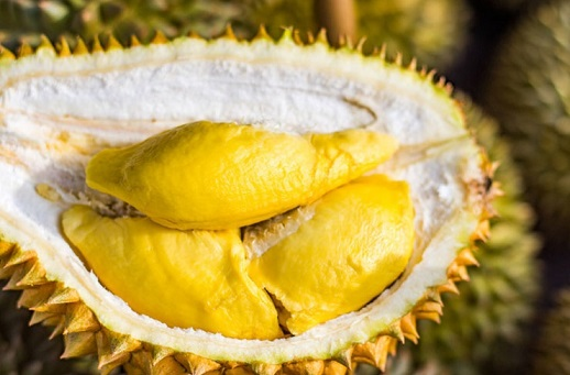 Durian causes gas leak fears in Melbourne RMIT Campus