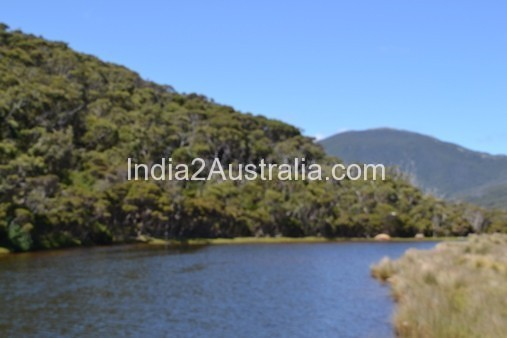 Wilsons Promontory Tidal River area